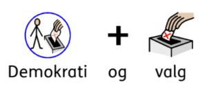 Demokrati-og-valg-piktogram